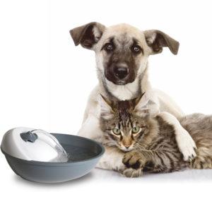 """Автоматическая поилка фонтан для кошек и собак Feed-Ex """"Spring"""". Новинка!"""