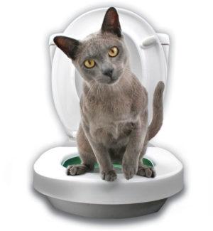 Система приучения кошек к туалету Litter Kwitter